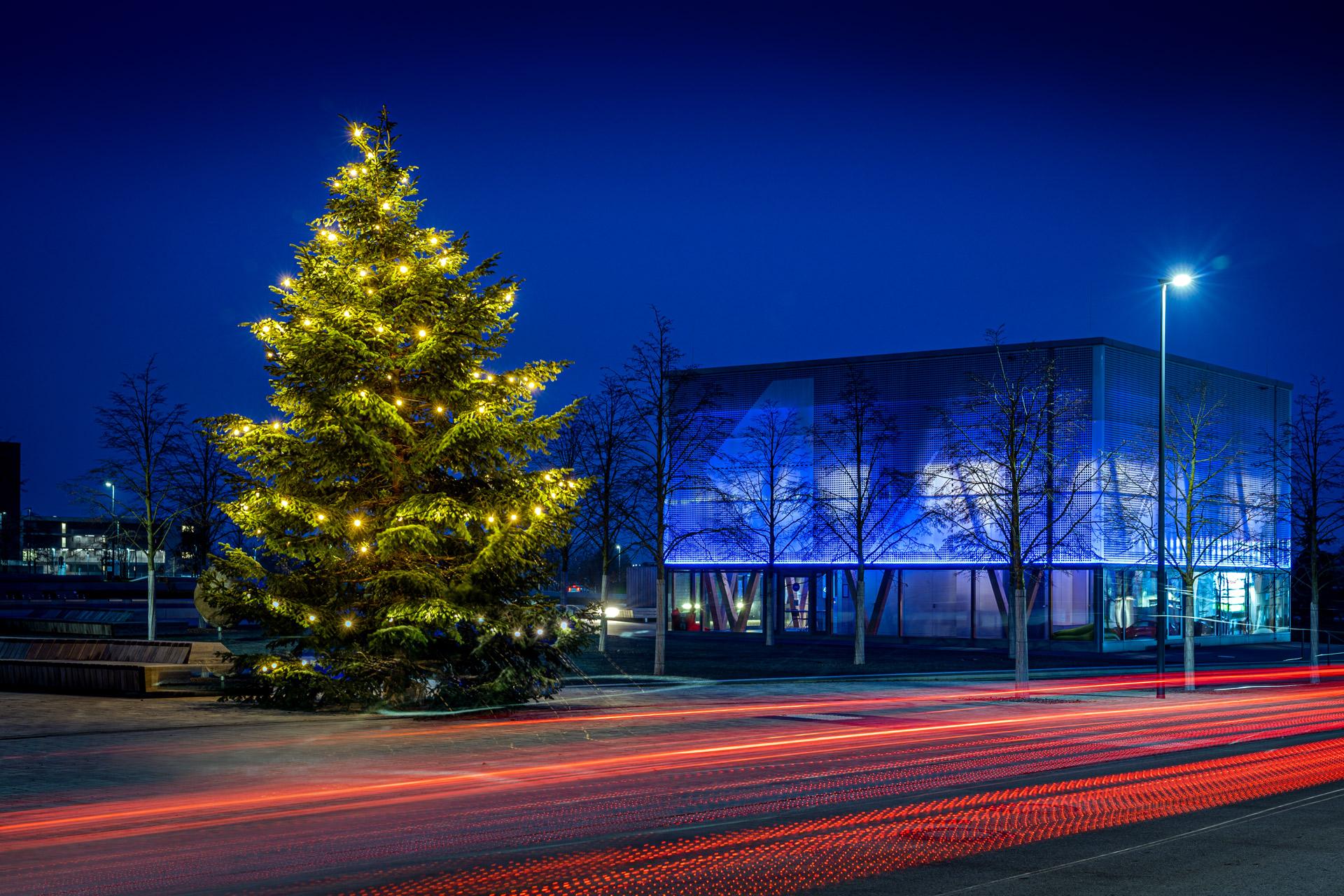 Frohe Weihnachten Wünscht Die Gartenbaugruppe Würzburg