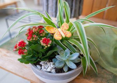 Floristik Hessdoerfer Blumenschale