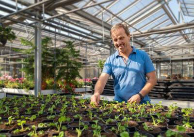 Gaertnerei Michael Hessdoerfer Pflanzenanbau