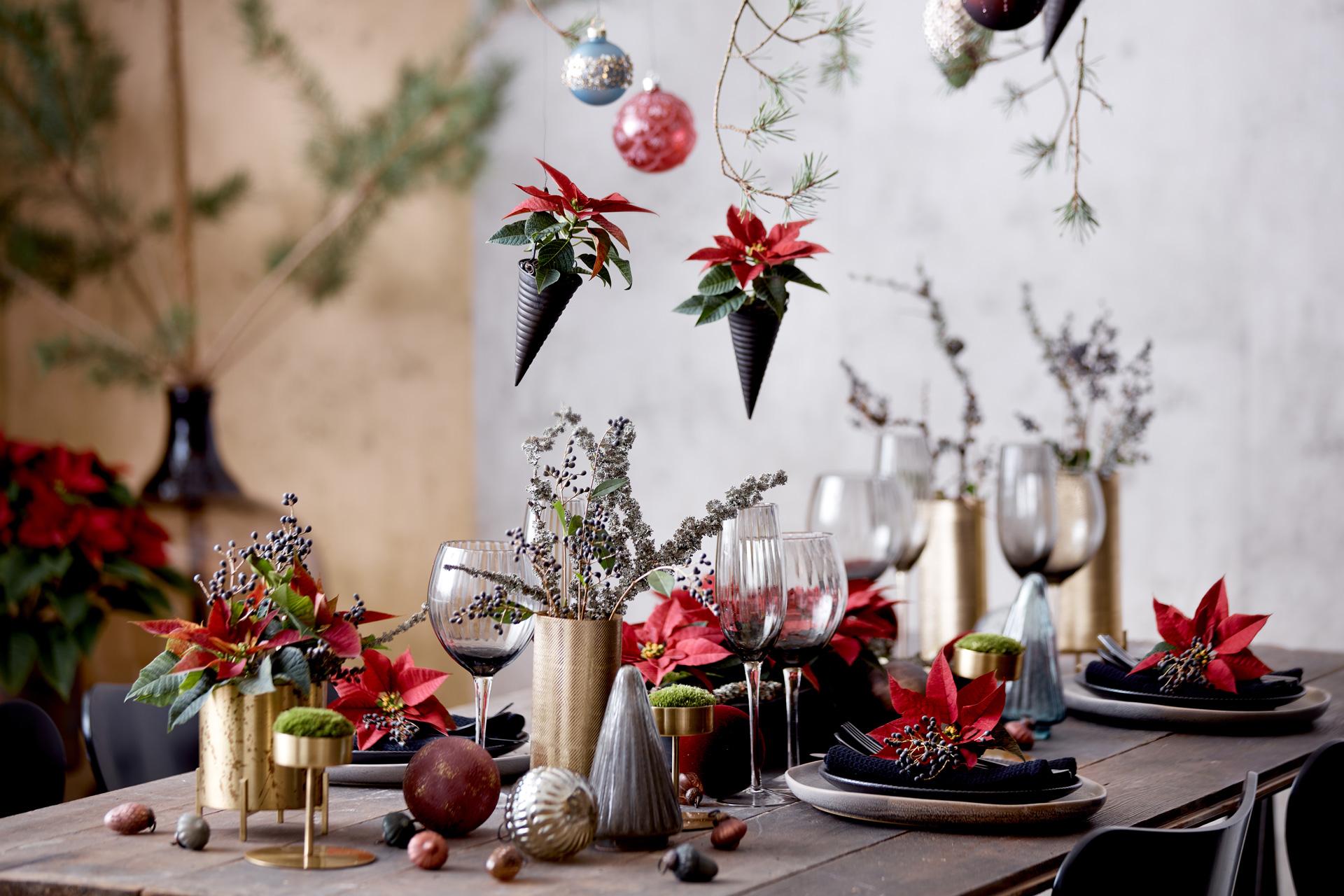 Gemütliche Weihnachten by Stars for Europe