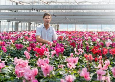 Blumenwerkstatt Rippel Ganzjährig Eigener Pflanzenanbau