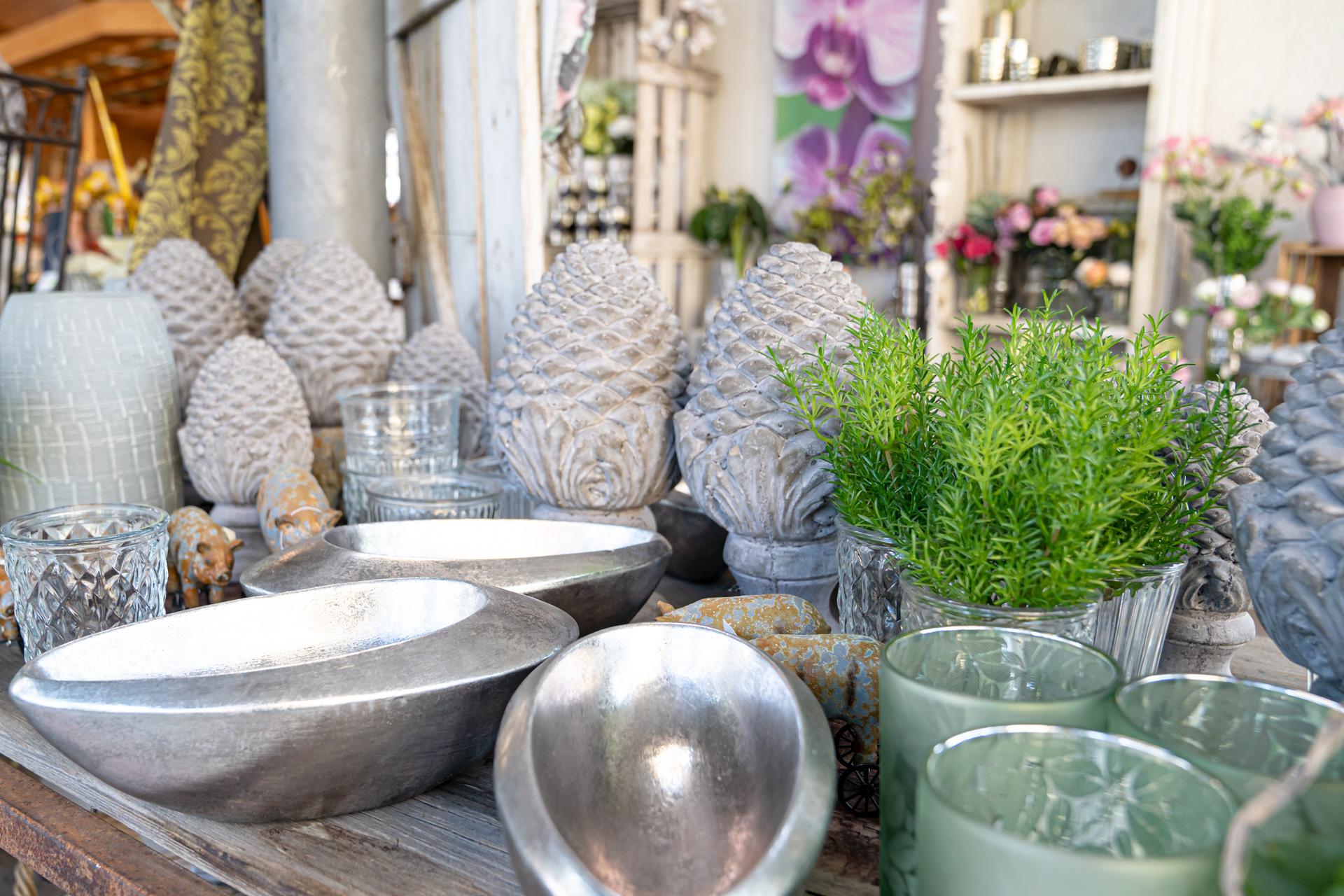 Blumenwerkstatt Rippel Zimmerpflanzen Und Dekoartikel