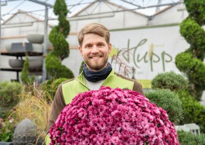 Gärtnerei Hupp Zierpflanzen-Beratung