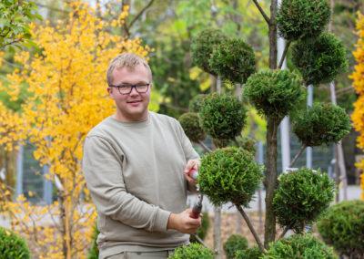 Gartenbaumschule Ringelmann Baumschnitt Und Pflege