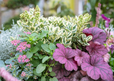 Gärtnerei Hupp Bepflanzung Herbstschale
