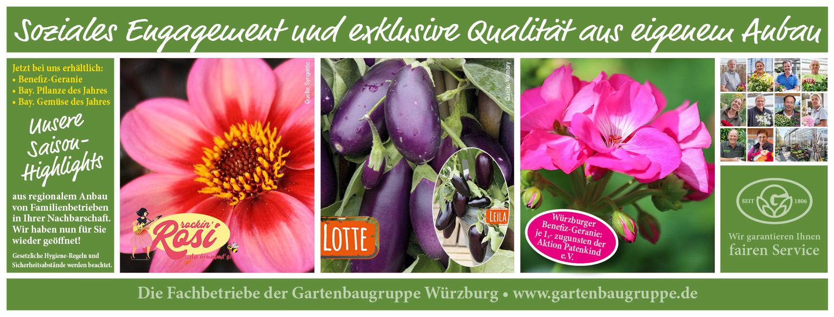 Gartenbaugruppe Würzburg Saisonhighlights Sommer 2020