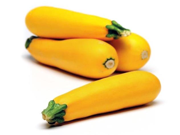 Gelbe Zucchini Wilma Quer