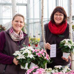 Fachbetriebe Der Gartenbaugruppe Würzburg