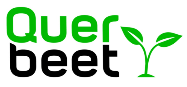 Querbeet Br Online Logo